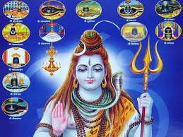 download shivji